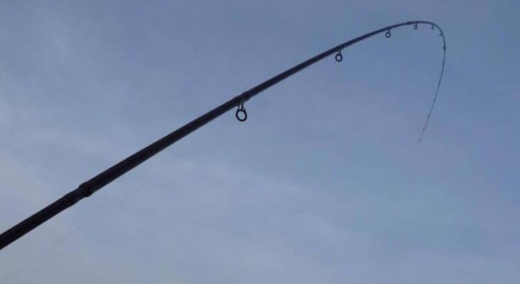 Prut s parabolickou akcí
