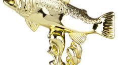 rybářské trofeje