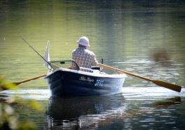 mezinárodní den rybářství