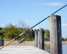 Tip#029: Rybářské pruty: základní informace a dělení